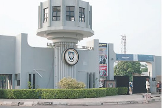 Court Prevents Removal of Sacked UI Lecturer