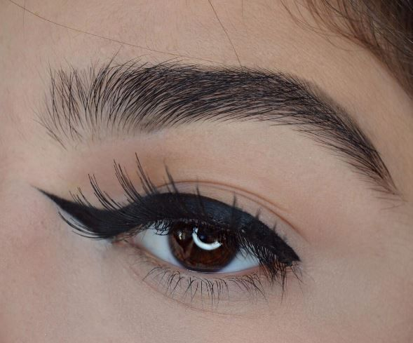 reverse-winged-liner-acadaextra
