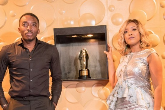 Organizers of Africa Magic Viewers Choice Awards to  Reveal  Nominations  for the 2018 Edition on the 30 of June 2018.