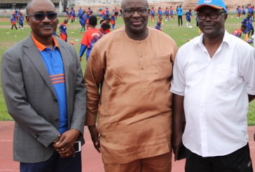 Youth Sports: NFF Boss Seeks Private Sector's Support