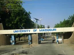 Suicide bomber gunned down in University of Maiduiguri