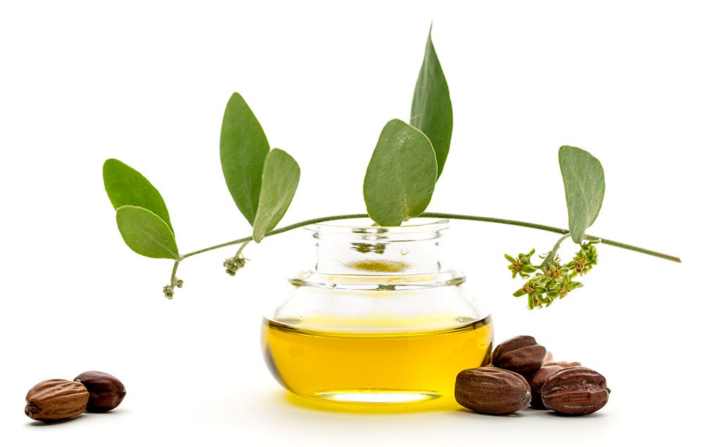 Benefit of Jojoba Essential Oil