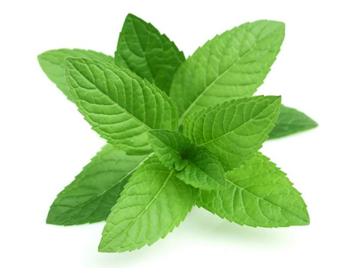 Mint Leaves For Skin: Experience The Mint Freshness On Your Skin This Summer With These 9 Amazing Home Remedies